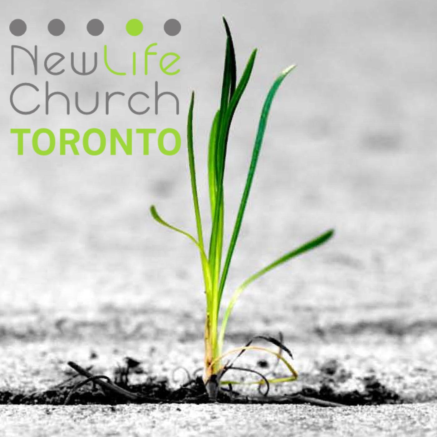 Newlife Church, Toronto
